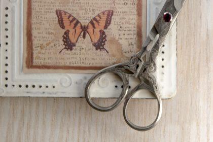 Butterfly-scissors