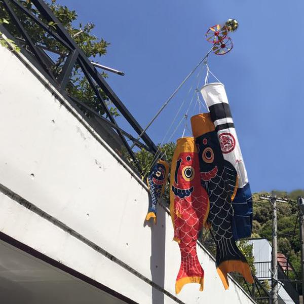 辺染物店の『郡上本染鯉のぼり』(郡上市)