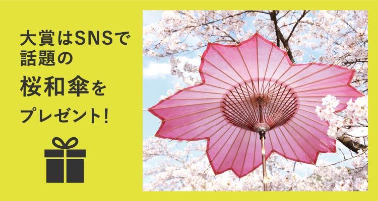 大賞はSNSで話題の桜和傘をプレゼント!